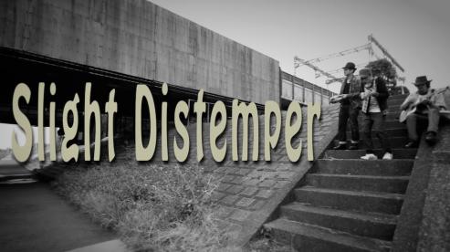 Slight Distemper